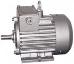 Электродвигатели асинхронные крановые серий ДМТ и АМТ