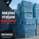 Приема и вывоз пэт бутылок в Киеве и области, сдать прессованный пэт, цена