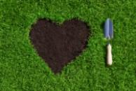 Професійний догляд за садом (садові послуги)