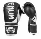 Перчатки боксерские кожаные VENUM Challendger BO-5245-BK