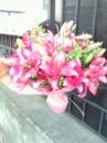 Лілії - букет квітів Івано-Франківськ