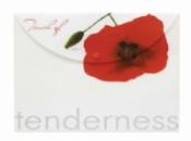 Папка-конверт на кнопке А4 «Tenderness» от ТМ Leo