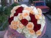 51 разноцветная роза
