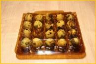 Упаковка под перепелиные яйца на 20 шт (многоразовая).