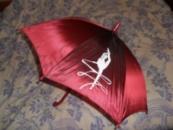 Печать на зонтах / Нанесення логотипу на парасолях