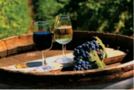 Продам отличного качества Вино Чача, Шампанское, Водку и Коньяк на розлив