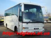 Лобовое стекло для автобусов MAN Noge 24460 в Никополе
