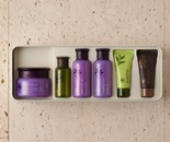 The best collection of innisfree set