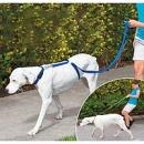 Поводок для собак «The Instant Trainer Leash»