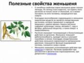 Настойка Женьшень 250 мл