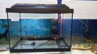 аквариум с крышкой 60л