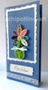 Открытка на День рождения семицветик