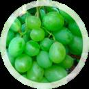 Столовый виноград «Восторг Идеальный»