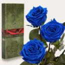 Три долгосвежих розы Синий Сапфир в подарочной упаковке (не вянут от 6 месяцев до 5 лет)