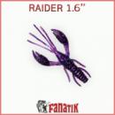 Raider 1.6