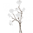Виниловая Наклейка Magnolia White