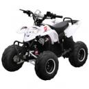 Квадроцикл Profi HB-EATV 1000E-1