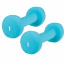 Гантели для фитнеса 2х1 кг NUUI JINGBO Голубые (nu003)