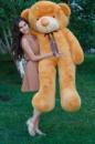 Большой плюшевый медведь Тедди 180 см светло-коричневый