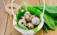Яйца перепелиные домашние.