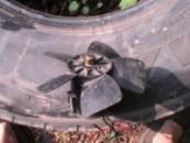 Электродвигатель печки ВАЗ с крыльчаткой