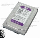 Жесткий диск Western Digital 1000GB (WD10PURX)