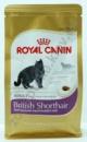 роял канин корм для кошек британцы 0.4 кг