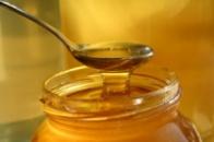 Мёд рознотровие