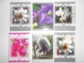 Блокнот для нотаток А6, тверд. обкладинка, 160 арк. офсет, клітинка «Екзотычні квіти»