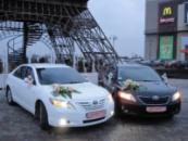 ПРОКАТ СВАДЕБНЫХ АВТО TOYOTA CAMRY ( ТОЁТА КАМРИ) в Харькове