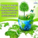 Вывоз картона и бумаги в Киеве. Прием и вывоз макулатуры в Киеве.