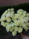 51 біла троянда в Івано-Франківську у вигляді серця