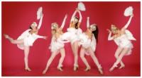 Шоу балеты