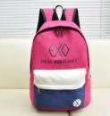 3-75 молодежный рюкзак / стильный / вместительный / женский рюкзак Цвет - розовый