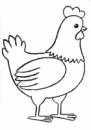 Цыплята 0-16 недель 5% БМВД Фидлайн