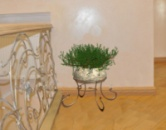 Кованая подставка для цветов «Рондо»