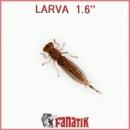 LARVA 00616
