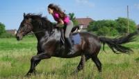 Верховая езда в Ялте