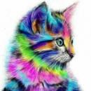 Безрамное Аннотация Кошка Животное DIY Живопись By Numbers Акриловые Краски На Холсте Рисунок Paint By Numbers оригиналь