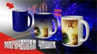 Чашки-хамелеоны ( магические )|escape:'html'