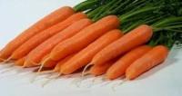 Морковь Лагуна (Луганск) Новый гибрид раннеспелой моркови Лагуна нантского типа. Характерной особенностью такого сорта м