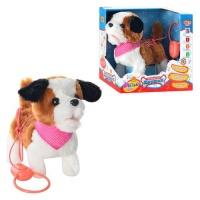 Собака MP 0906|escape:'html'