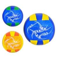 Мяч волейбольный EV 3160