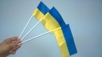 Флажки Украины на палочке