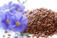 Семена льна 100грамм,
