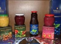 ЧЕРНИЧНАЯ ПАСТА Жидкие фрукты 1 ящик (9литровых бутылок) + Дисконт