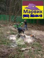 расчистка участка Киев