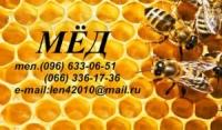 ООО «Пчела»