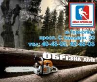Спилювання дерев Тернопіль|escape:'html'
