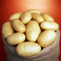 Картофель Бюррен|escape:'html'